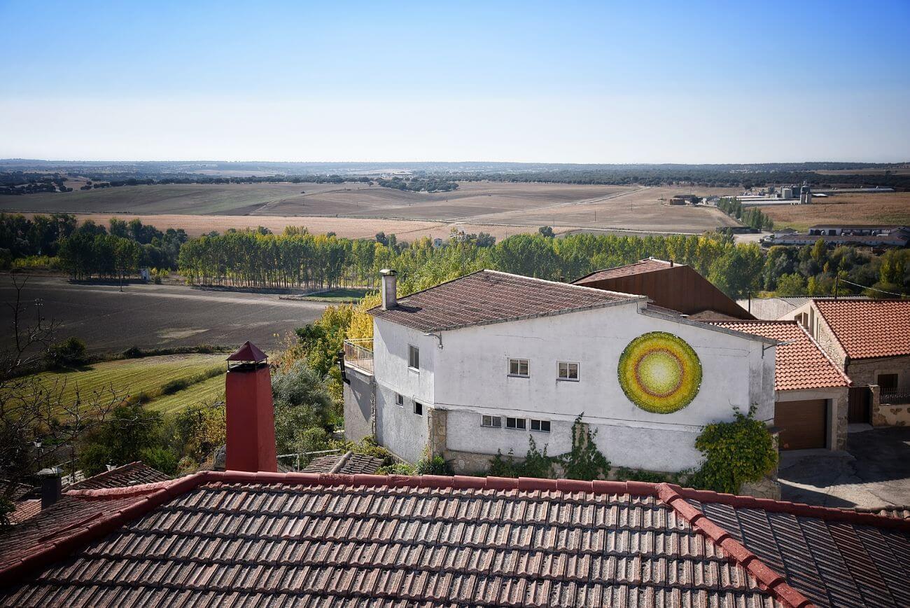 Detalle de un tallo. Mirando dentro. Certamen de muralismo en Juzbado 2018. Salamanca