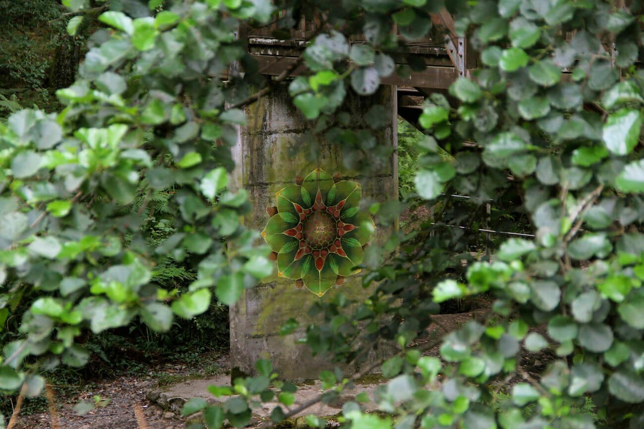 La Florespora del Bosque.