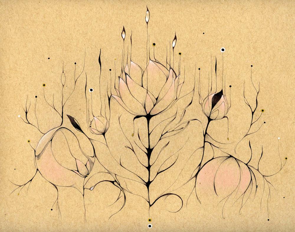Organic grow. Tinta y lápiz sobre papel